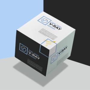 vray-render-ozel-ders kullanıcı deneyimi (ux) nedir?