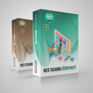 web-tasarim-ozel-ders amp nedir?